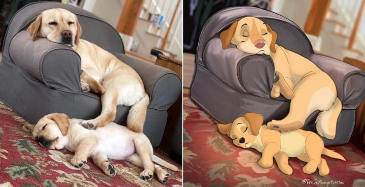Illustrator transforms our beloved pets into sublime Disney characters